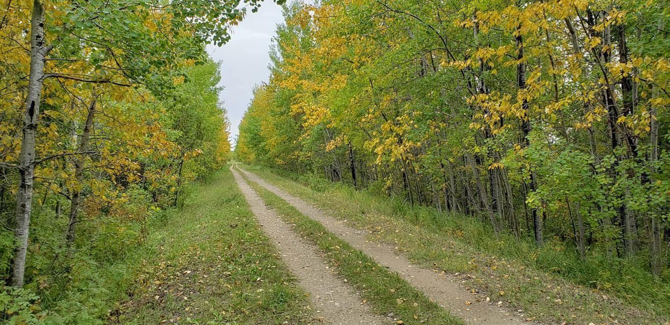 Rossburn Subdivision Trail